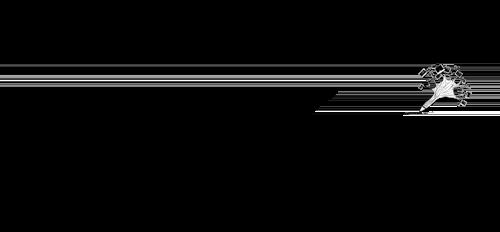 Colaboratori Sonorizare Brasov